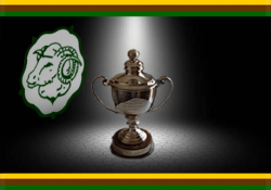Individual Stroke Play Championship Results Available